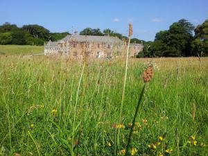 Meadow shot of Trelowarren Mansion