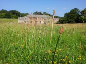 Meadow shot of Trelowarren Mansion
